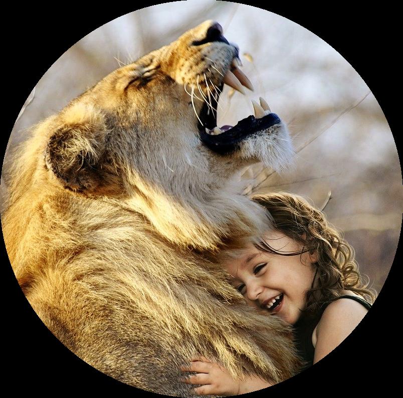 Wie du durch Liebe Löwen und sonstige Ungeheuer zähmst – sogar Menschen!